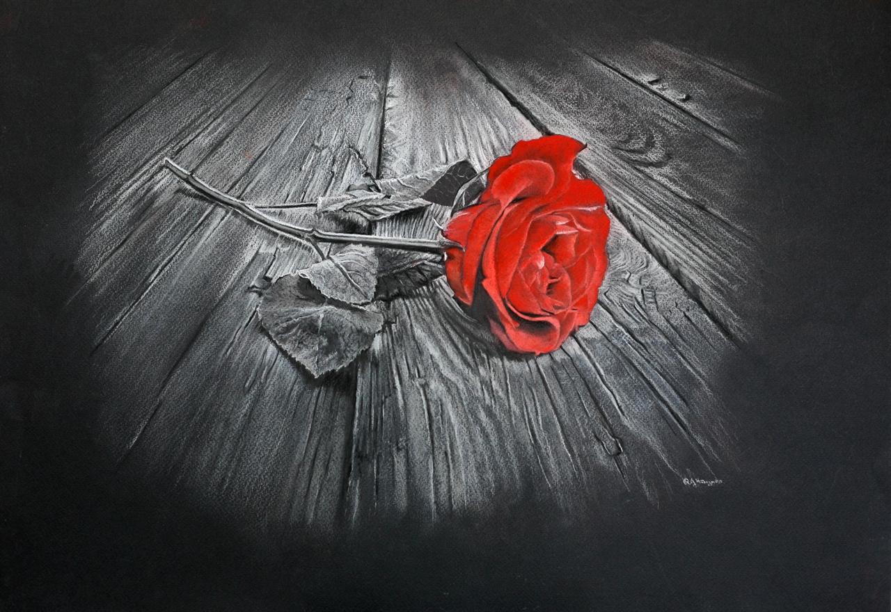 Red Rose - Pastel