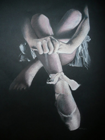Resting in the wings - pastel