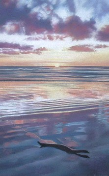 Driftwood, Manawatu River New Zealand -Pastel